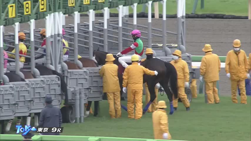 東京HJ レース映像